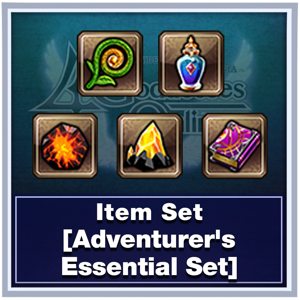 Item Set [Adventurer's Essential Set]
