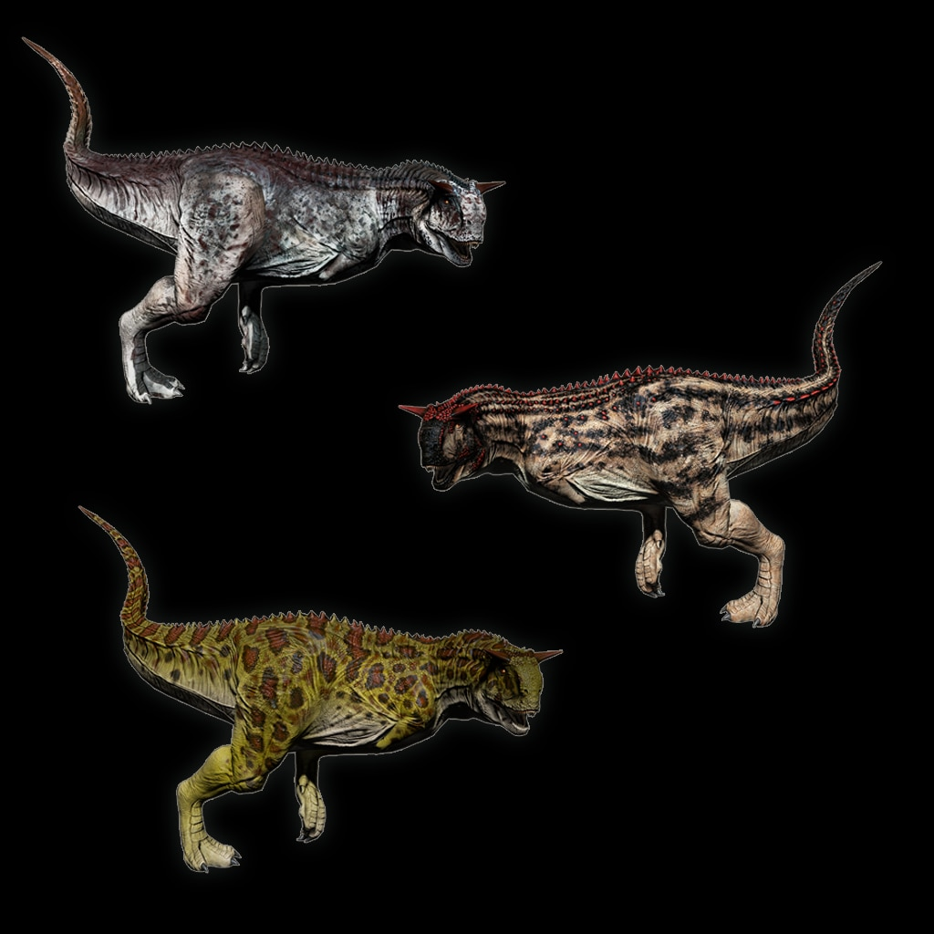 Carno Pack 01