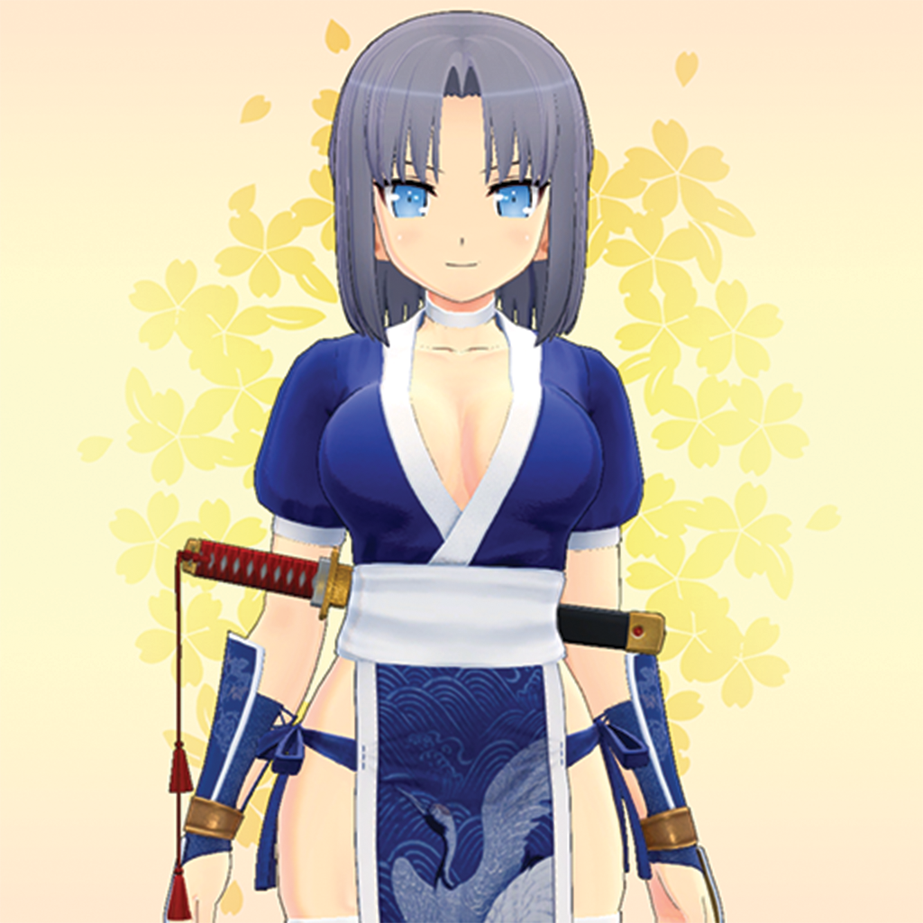 Kasumi's Outfit