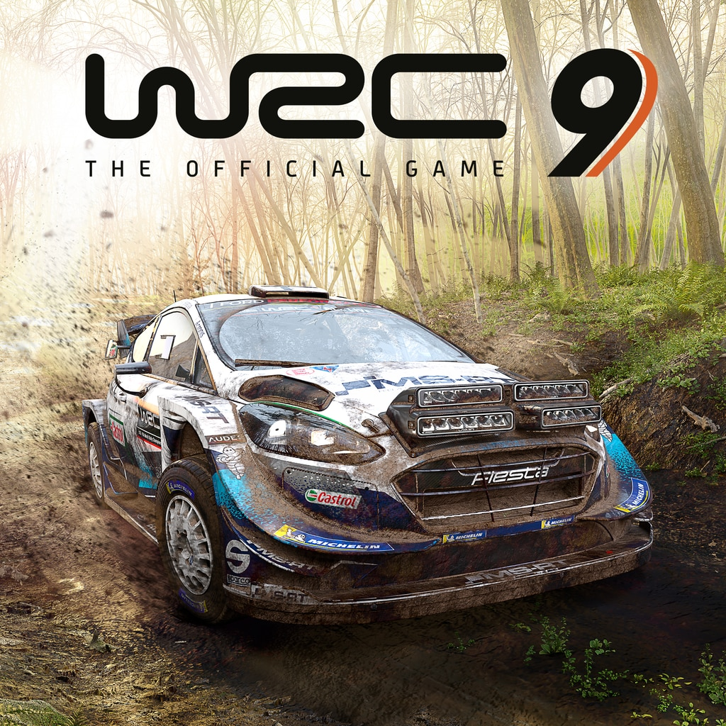 WRC 9 FIA World Rally Championship PS4 & PS5